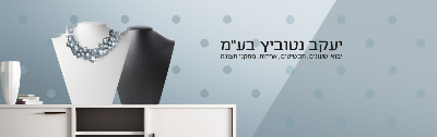 יעקב נטוביץ בע